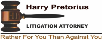 Harry Pretorius Litigation Attorney